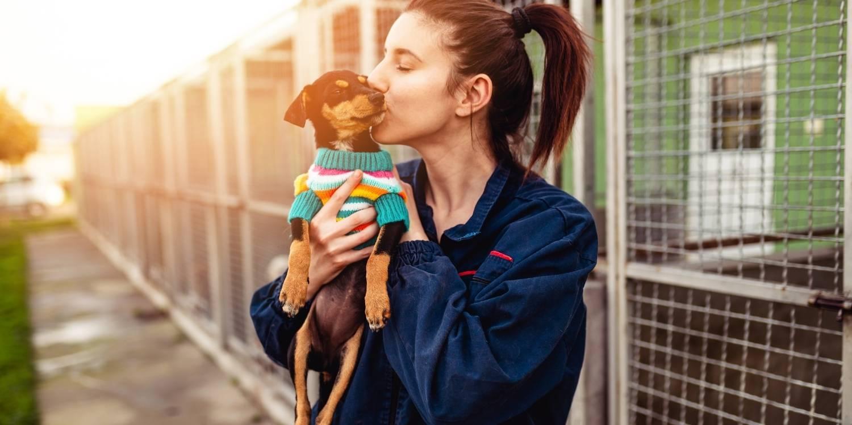 Adopt a pet Portland