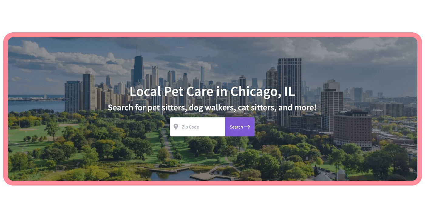 Adopt a pet in Chicago - CTA