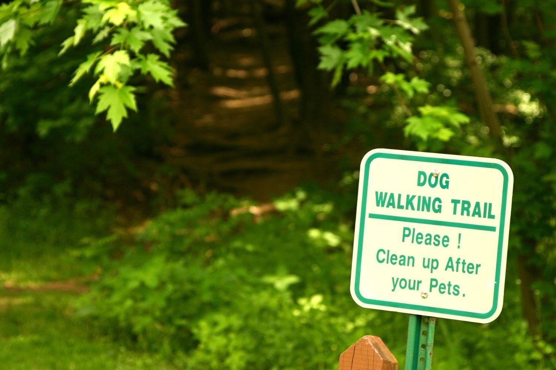 Atlanta dog hiking trail clean up