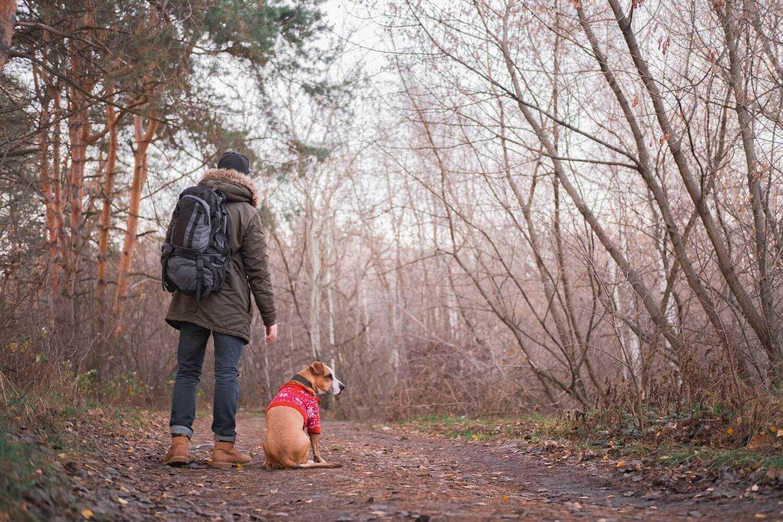 Dog-friendly Hike DC - on trail