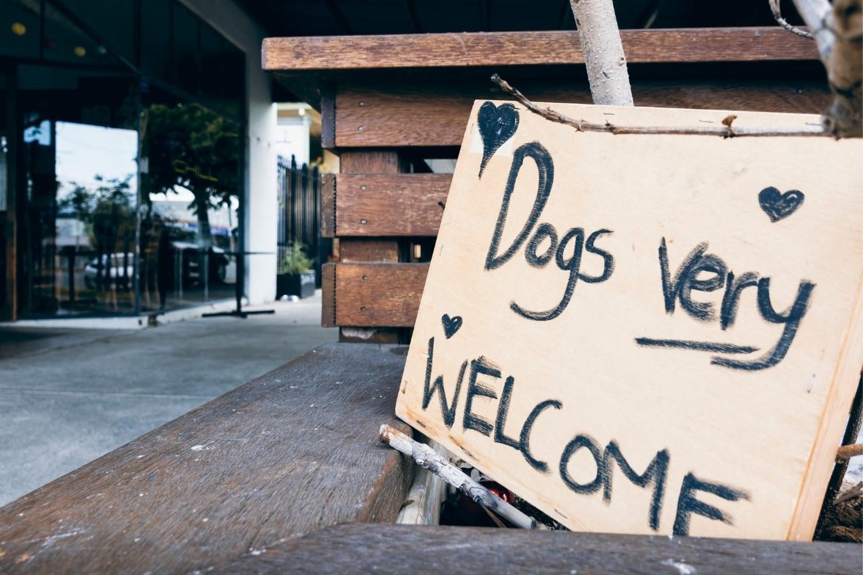 LPC-Dog-Friendly-Restaurants-Charlotte-sign