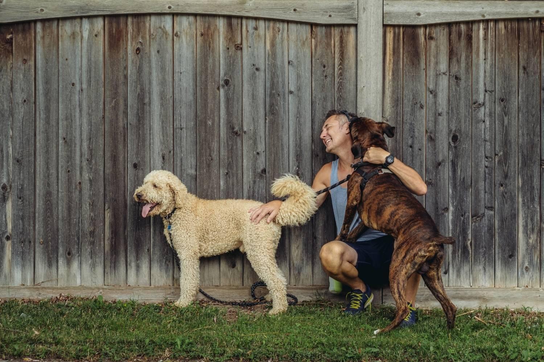 Hire a pro - dog kisses