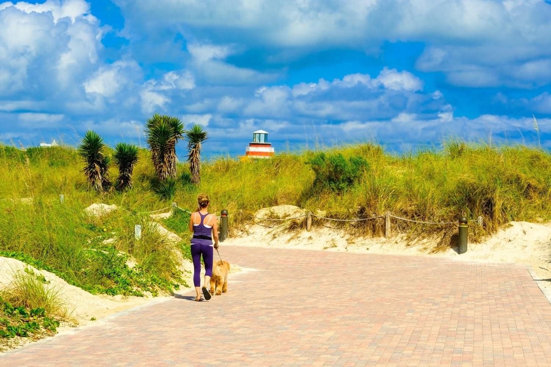 Miami Walking to dog beach
