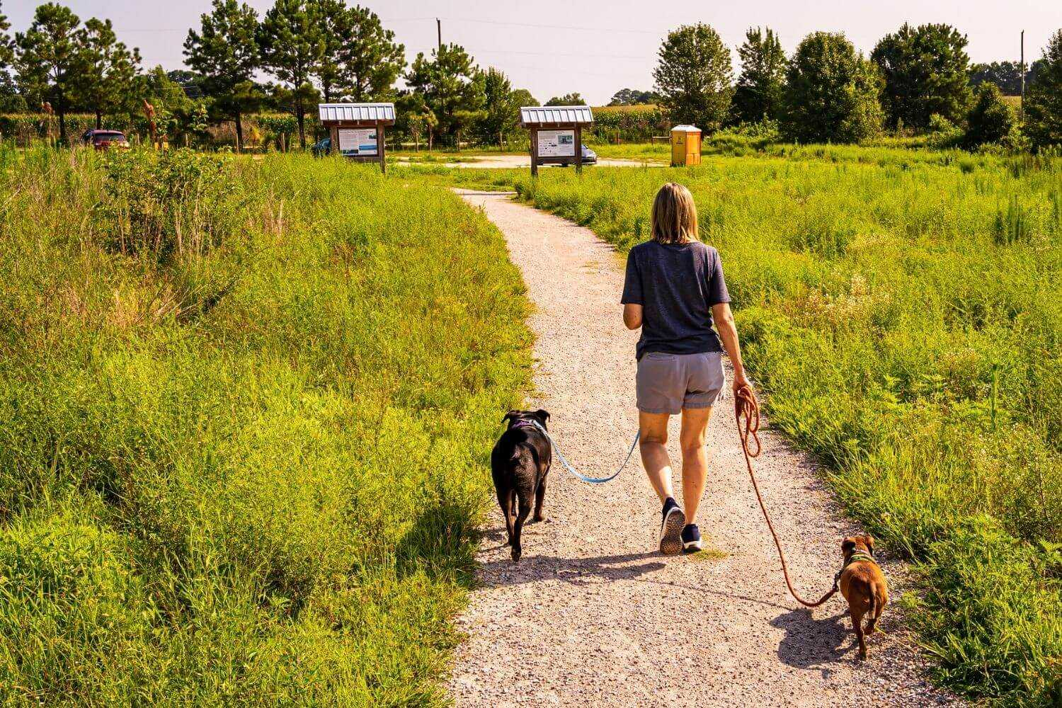 Raleigh Dog Parks Nature Area