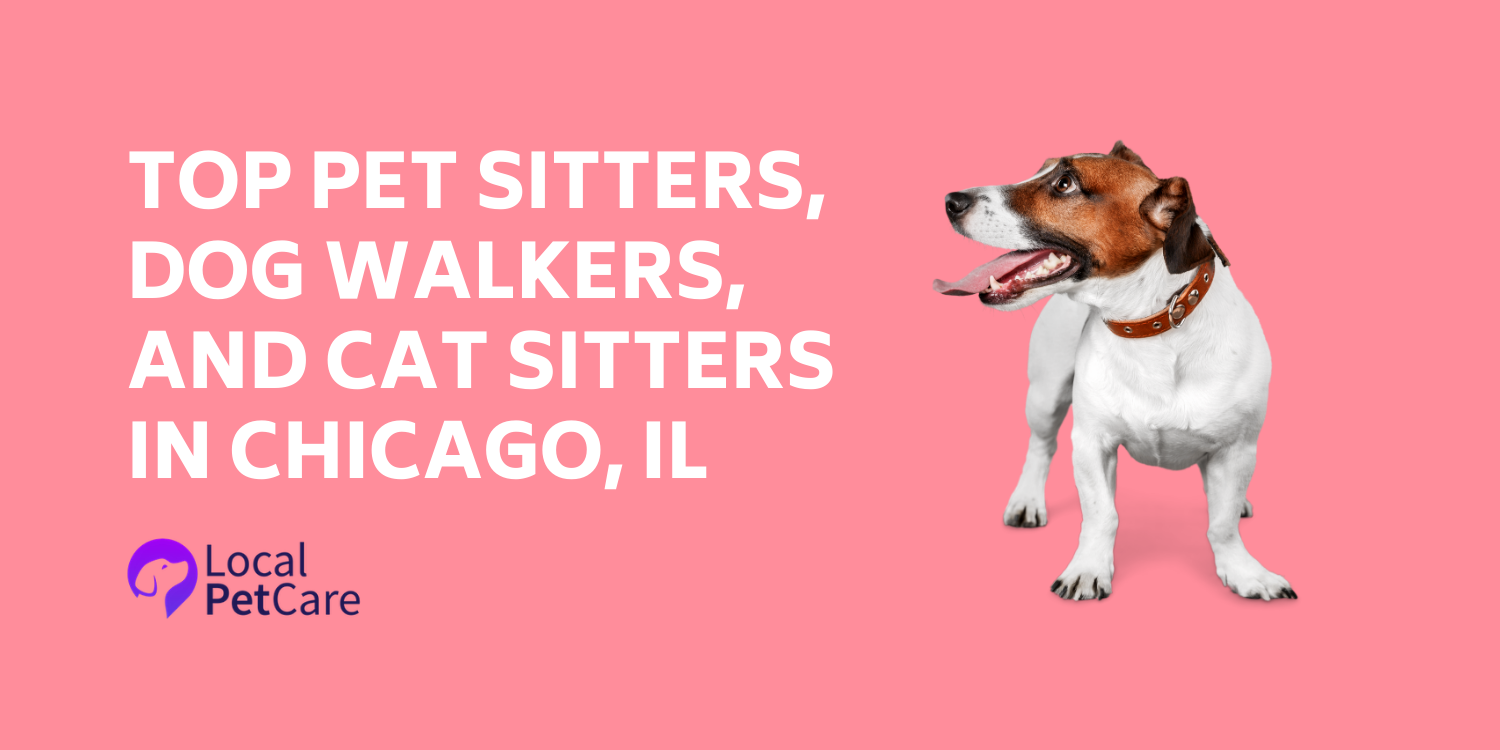 Local Pet Care is excited to feature 8 of the best professional pet care providers in Chicago, IL!