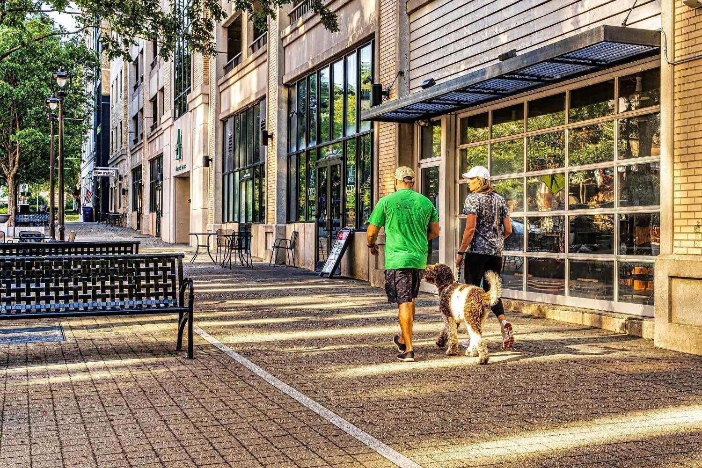 Raleigh dog walk